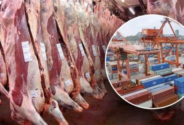 exportaciones carne 2021, exportaciones carne julio 2021, exportaciones carne, exportaciones carne Colombia 2021, Exportación carne 2021, exportación de bovinos Colombia, exportación carne bovina, carne vacuna, total exportaciones carne Colombia, ganado bovino, ganadería bovina, ganaderos, ganaderos colombia, ganado, vacas, vacas Colombia, bovinos, Ganadería, ganadería colombia, noticias ganaderas, noticias ganaderas colombia, CONtexto ganadero, contextoganadero