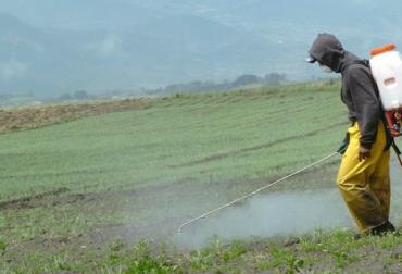 agroinsumos, insumos agrícolas, costos producción
