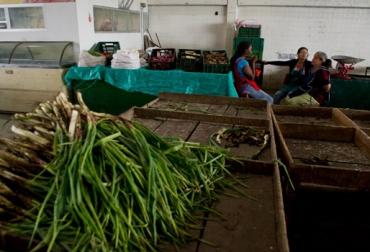Pérdidas económicas por paro agrario