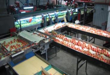 Energías renovables para el sectior frutícola