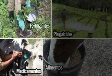 Informe especial Insumos agropecuarios