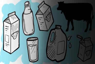 Envases de la leche