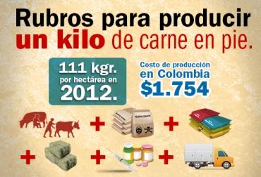 Costos producción carne colombia