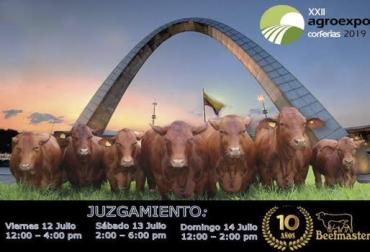 Beefmaster, primera, década, asociación, últimos, dos, años, realmente, forma, acelerada, ganaderos, están, conociendo, raza, viendo, realmente, hecha, trópico, además, ven, porcentajes, rusticidad, productividad, socios, animales, producción, reproducción,  ,  CONtexto ganadero, ganaderos Colombia, noticias ganaderas Colombia