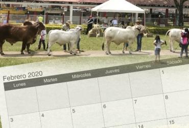 Agroshow Pajonales 2020, IV Expoterneros 2020, Eventos ganaderos, ferias ganaderas, ferias ganaderas Colombia, Eventos ganaderos febrero 2020, subastas, inicio 2020, febrero 2020, Venta de ganado, subastas ganaderas, bovinos, vacas, eventos bovinos Colombia, CONtexto ganadero, ganaderos Colombia, noticias ganaderas Colombia