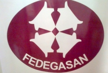 Fedegasan