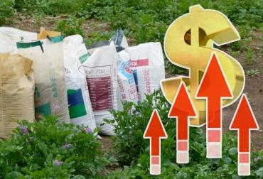 Alto precio de los insumos en Colombia