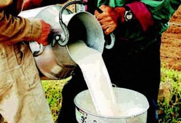 precio de la leche en Colombia