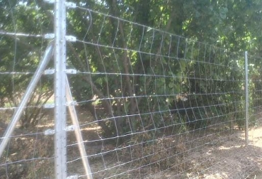 Cerca eléctrica para ganadería