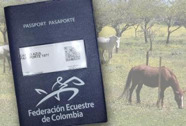 pasaporte equino colombia