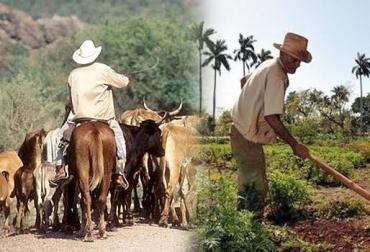 ganadero, agricultor, Medio Ambiente, conservación, Agua, recursos, suelo