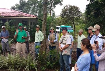 Proyecto Ganadería Colombiana Sostenible, Proyecto Ganadería Colombiana Sostenible noticias, Sistemas silvopastoriles, sistemas silvopastoriles noticias, sistemas silvopastoriles Colombia, CONtexto ganadero