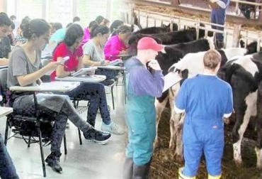 administración de empresas ganaderas, gerencia de ganaderías, Gerencia Estratégica de la Empresa Ganadera, Universidad CES, Diplomado en Gerencia Estratégica de la Empresa Ganadera