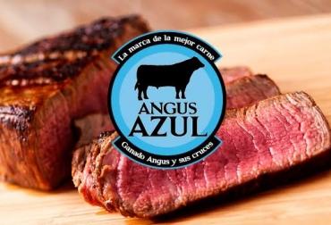 carne, carne colombia, carne angus, carne brangus, angus brangus, asociación angus & brangus de colombia, angus azul, angus azul colombia