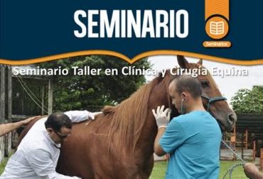 equinos, causas y tratamientos en equinos, síndrome abdominal agudo, cólico en equinos, santiago cuartas uribe, Universidad Cooperativa de Colombia, enfermedades en equinos, tratamientos para equinos, équidos