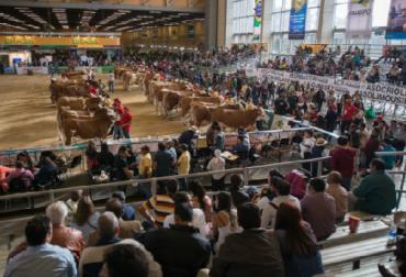Agroexpo 2017, protocolos sanitarios, CONtexto ganadero, ganadería Colombia