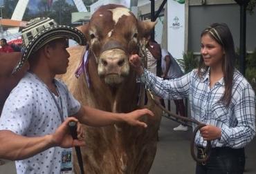 Agroexpo, Agroexpo  2017, Beef Master, pajillas de Lucas, Asociación Beef Master, CONtexto ganadero, ganadería Colombia