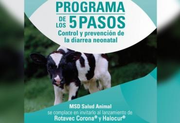 5 pasos prevención control diarrea neonatal, diarrea neonatal, plataforma neonatal, MSD Salud Animal, plataforma neonatal MSD Colombia, prevenir y controlar diarrea en terneros, diarrea neonatal, Contexto ganaderos, ganaderos Colombia