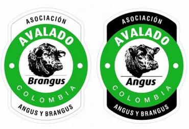 sello angus, sello brangus, asoangusbrangus, asociación angusbrangus de colombia, sello de calidad de la carne, carne angus, carne brangus, contexto ganadero, ganadería colombia