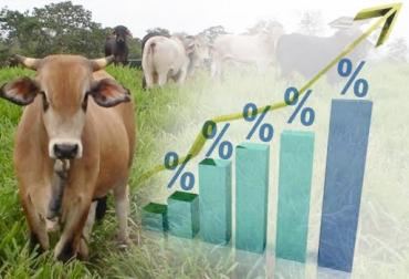 tasas de interés,fomento,alta,excesivas,entidades de control,Contextoganadero