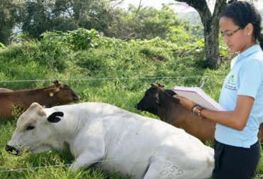 registros, toma de registros, necesidad de los registros, información ganadera, ceg, cultura empresarial ganadera, ganadería sostenible, rentabilidad ganadera, contexto ganadero, noticias ganaderas colombia, ganadería colombia