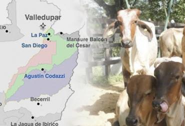 Colombia, departamento del Cesar, Ganadería, fiebre aftosa, San Diego, La Paz y Agustín Codazzi en cuarentena por presencia de fiebre aftosa, bovinos, ganadería colombia, ganadería colombiana sostenible, Ganadería Sostenible, Agricultura Colombia, noticias de ganadería colombiana, Ferias Ganaderas, ferias ganaderas colombia, hablemos de leche, hablemos de carne, ganaderos, leche, precio de la leche, precio de la carne, precio del ganado, producción leche, carne bovina, carne res, Forrajes, pastos