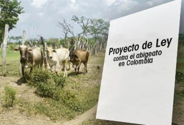 Abigeato sería delito autónomo, hurto o robo de ganado, plenaria del Senado, delincuencia es multimodal, secuestro, extorsión, asesinato, extinción de dominio, cárcel a abigeatos, CONtexto ganadero, noticias de ganadería colombiana.