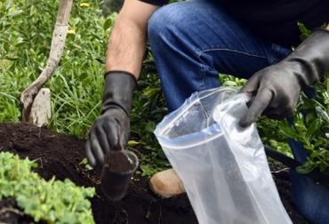 Ganadería, ganadería colombia, noticias ganaderas, noticias ganaderas colombia, CONtexto ganadero, análisis de suelos, inteligencia artificial al análisis de suelos, Agrosavia, Mintic, alianza agrosavia mintic, suelos, calidad suelo