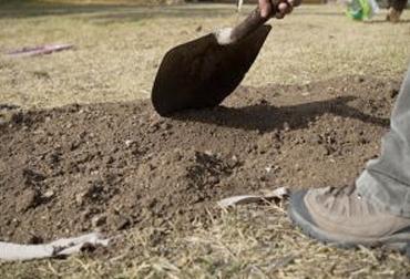 buenas prácticas del uso del suelo en la ganadería, Buenas Prácticas Ganaderas, uso del suelo en la ganadería, clases de suelo, sobrepastoreo, no hacer quemas