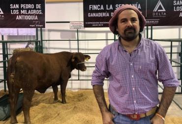 Brangus, Brangus en Colombia, genética Brangus, ganadería El Bagual, ganadería argentina, genética brangus argentina,