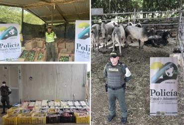 ganaderia, ganaderia colombiana, ganaderia colombia, contexto ganadero, noticias ganaderas, noticias ganaderas colombia, incautacion productos agropecuarios, carne en cnal, contrabando carne, contrabando, polfa, operaciones polfa, productos agropecuarios, ganaderos, ganaderos colombia