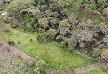 Ganadería Colombiana Sostenible, Banco Mundial, Fedegán, Ministerio de Ambiente, noticias del sector ganadero colombiano, CONtexto ganadero