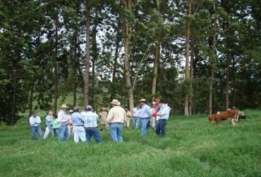 Reactivan las BTG, inician en zonas de riesgo, gestión de conocimiento, socialización, externalización, combinación, interiorización, sanidad animal, erradicar fiebre aftosa, noticias de ganadería colombiana, CONtexto ganadera.