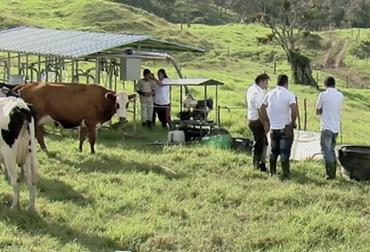 Ganadería, ganadería colombia, Ganadería colombiana, CONtexto ganadero, noticias ganaderas, noticias ganaderas colombia, empresa ganadera, trabajo en equipo ganaderia, capacitacion trabajadores, ganaderos, ganaderos colombia, MSD