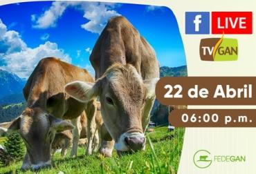 TVGAN, Facebook Live TVGAN, TVGAN 2020, IATF, Uso de la IATF como herramienta para mejorar parámetros productivos y reproductivos en Ganadería, facebook live, capacitación, capacitación en línea, capacitación online, fedegan, Colombia, Fedegán capacitación, capacitación Facebook Live, formación ganaderos, capacitación ganaderos, capacitación ganadería, coronavirus, COVID-19, cuarentena, Ganadería, ganadería colombia, noticias ganaderas, noticias ganaderas colombia, CONtexto ganadero