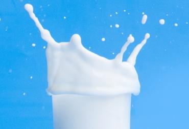Sólidos totales leche, Contexto ganadero sólidos totales, Mejorar sólidos totales a partir del pasto, mejorar sólidos totales leche, aumentar sólidos totales leche, aumentar sólidos en leche con forrajes, relación suelo-planta-animal, factores sólidos totales, coronavirus, COVID-19, cuarentena, Ganadería, ganadería colombia, noticias ganaderas, noticias ganaderas colombia, CONtexto ganadero