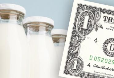 trópico bajo, lechería, leche, Costos de Producción, dólar, precio, litro de leche, importaciones, Asoholstein, insumos, ordeño, mano de obra, razas cebuinas, lactancia, Ganadería, ganadería colombia, noticias ganaderas colombia, CONtexto ganadero