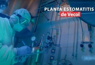 Moderna Planta de Estomatitis de Vecol S.A., noticias ganaderas, noticias ganaderas Colombia, ganadería, ganadería Colombia, CONtexto ganadero