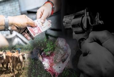 Ganadería, ganadería colombia, noticias ganaderas, noticias ganaderas colombia, CONtexto ganadero, Ganadería Sostenible, inseguridad, problema de inseguridad en colombia, inseguridad en el campo, problema de inseguridad en el campo, Abigeato, ley del abigeato en colombia, Abigeato en Colombia, carneo, carneo en Colombia, extorsiones ganaderos, extorsiones ganaderos en colombia, muerte de ganaderos en colombia, amenazas a ganaderos en colombia, sistema judicial colombiano