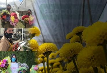 ganadería, ganadería colombia, noticias ganaderas, noticias ganaderas colombia, contexto ganadero, sostenibilidad, sostenibilidad agrícola, sector agrícola, sector floricultor, sector de las flores, asocolflores, Facebook live, transmisión en vivo Contexto ganadero, papel de la mujer, la mujer en el sector floricultor, trabajo de la mujer en el sector floricultor, sostenibilidad en el sector floricultor, exportaciones de flores