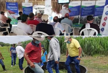 ganadería, ganadería colombia, noticias ganaderas, noticias ganaderas colombia, contexto ganadero, transferencia de conocimiento en Córdoba, capacitaciones en Córdoba, ganaderos de Córdoba, Agrosavia, Fedegán