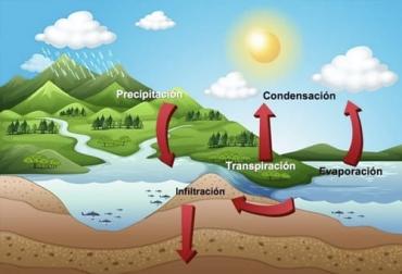 ganadería, ganadería colombia, noticias ganaderas, noticias ganaderas colombia, contexto ganadero, producción ganadera, producción ganadera sostenible, ganadería regenerativa, avances en la ganadería regenerativa, qué hacer en ganadería regenerativa