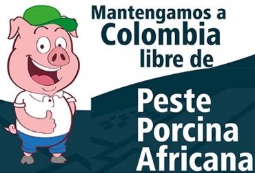peste porcina africana (PPA), República Dominicana, ICA, PPA enfermedad viral, hemorrágica y altamente contagiosa, PPA afecta a los cerdos domésticos, Impacto económico de la PPA, Cómo se trasmite la PPA, Prevención de la PPA en Colombia, apoyo de USDA a República Dominicana, vacas, vacas Colombia, lechería, bovinos, ganadería bovina, ganadería bovina Colombia, noticias ganaderas, noticias ganaderas Colombia, contextoganadero