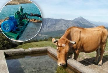 acueducto ganadería