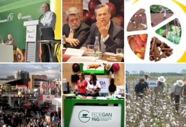 Eventos agropecuarios 2013