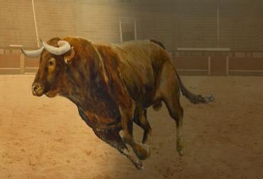 Criadores toro de lidia