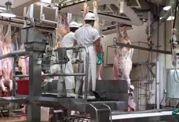 Exportación de carne a Estados Unidos