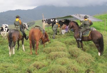 dicar ganadería