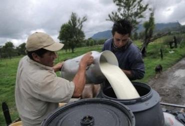 Crisis lechera en Colombia