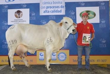 Concursos lecheros en Colombia